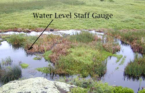 Staff gauge at Na Pohaku o Hauwahine at time of high water on January 29, 2002